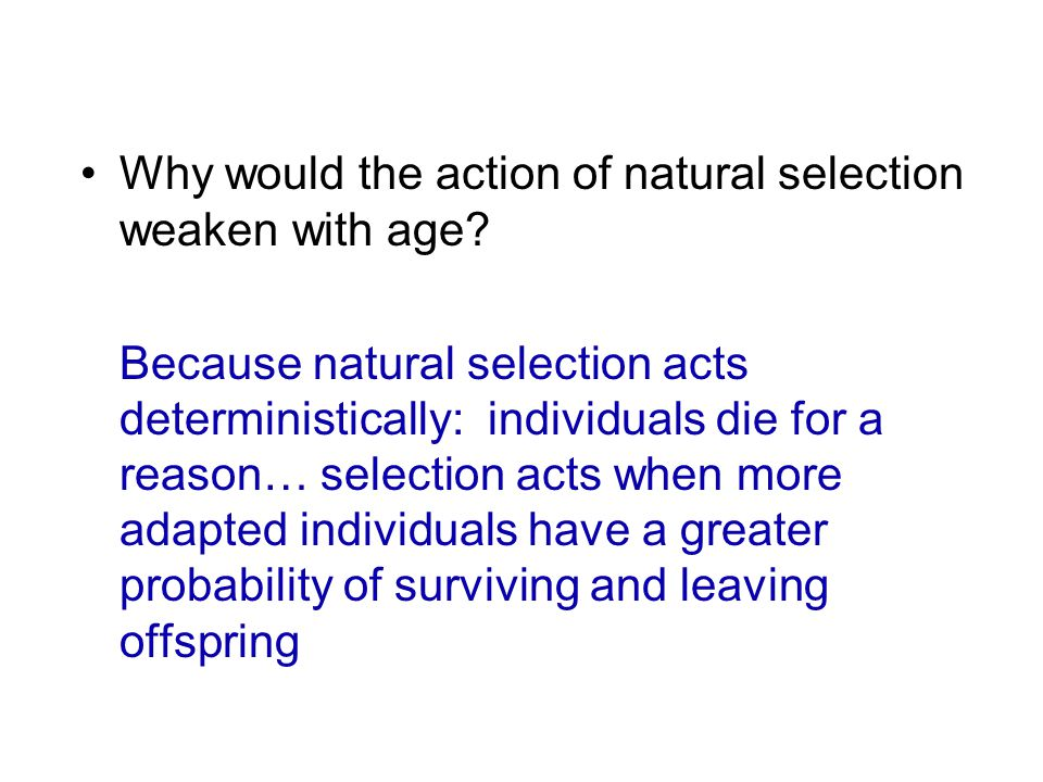 Why would the action of natural selection weaken with age? Because natural selection acts deterministically: individuals die for a reason… selection a