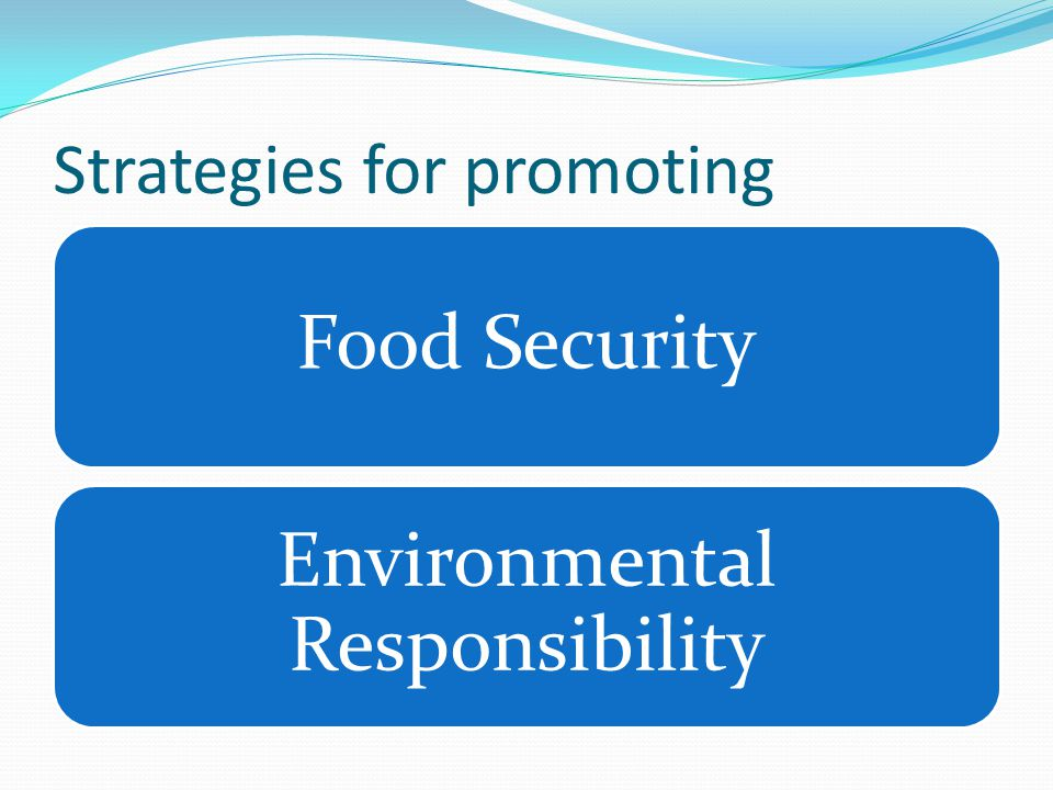 Strategies for promoting Food Security Environmental Responsibility