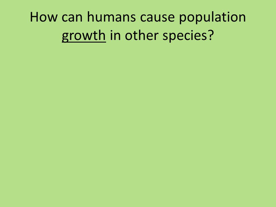 How can humans cause population growth in other species