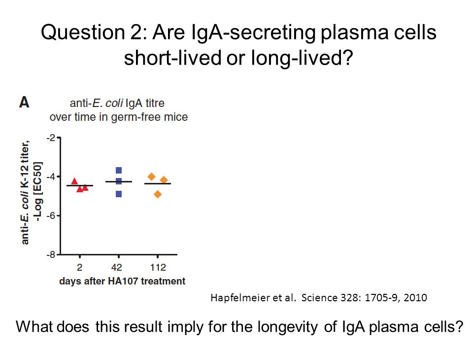 Hapfelmeier et al. Science 328: 1705-9, 2010 Question 2: Are IgA-secreting plasma cells short-lived or long-lived? What does this result imply for the