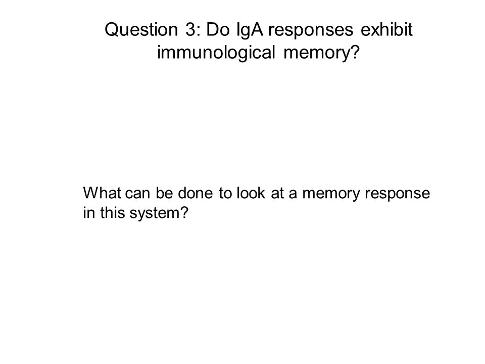 Question 3: Do IgA responses exhibit immunological memory? What can be done to look at a memory response in this system?
