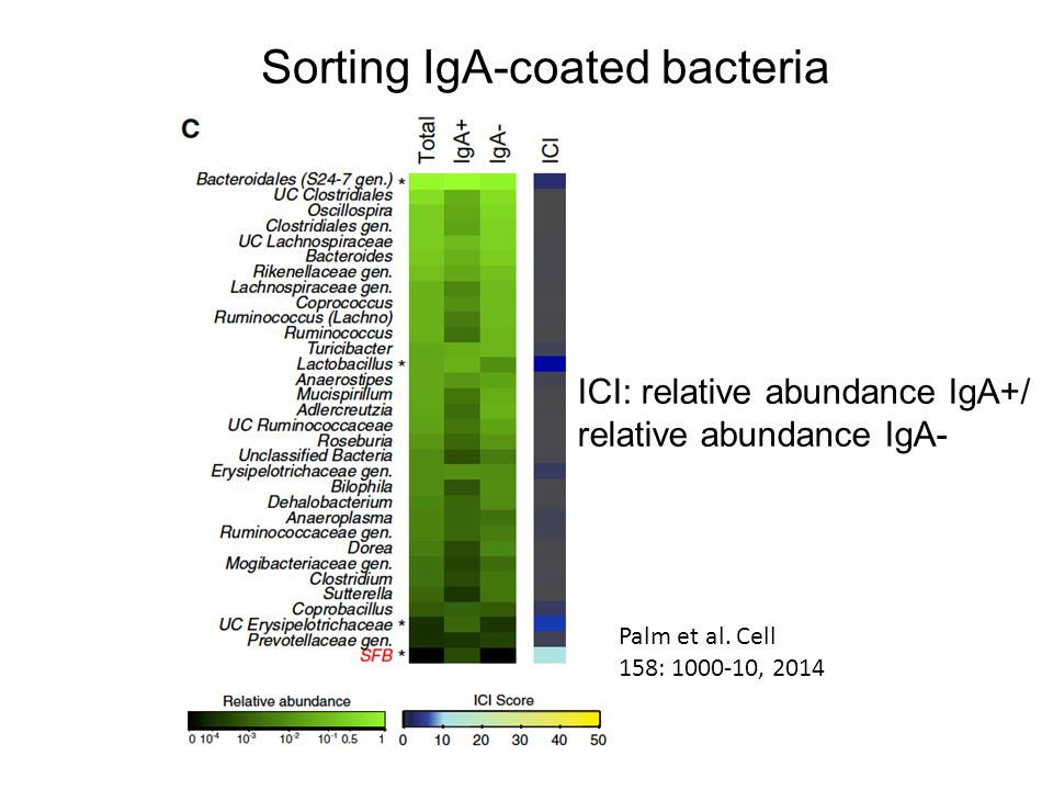 Sorting IgA-coated bacteria Palm et al. Cell 158: 1000-10, 2014 ICI: relative abundance IgA+/ relative abundance IgA-