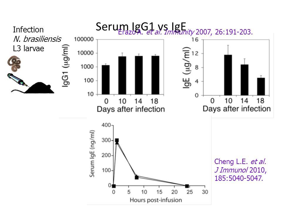Serum IgG1 vs IgE Infection N. brasiliensis L3 larvae Erazo A. et al. Immunity 2007, 26:191-203. Cheng L.E. et al. J Immunol 2010, 185:5040-5047.