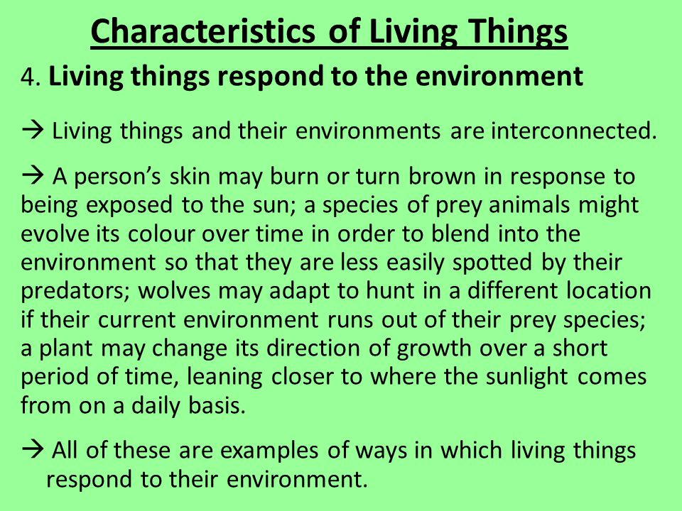 Characteristics of Living Things 4.