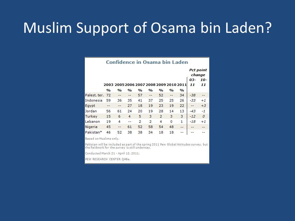 Muslim Support of Osama bin Laden?