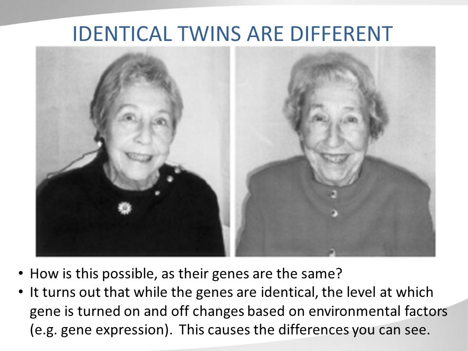 IDENTICAL TWINS ARE DIFFERENT How is this possible, as their genes are the same.