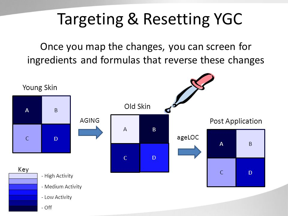 Targeting & Resetting YGC Young Skin Old Skin A B C D A B C D Key - High Activity - Off - Medium Activity - Low Activity Once you map the changes, you can screen for ingredients and formulas that reverse these changes Post Application A B C D AGING ageLOC