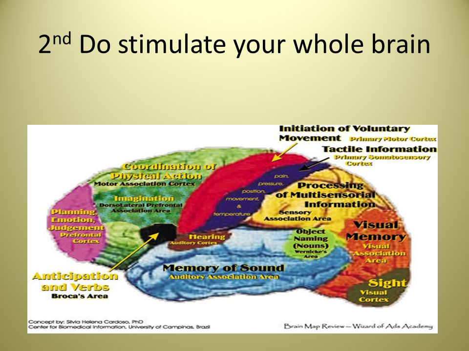 2 nd Do stimulate your whole brain