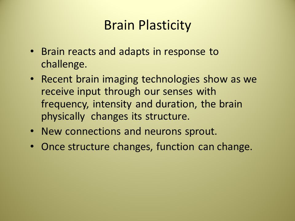 Brain Plasticity Brain reacts and adapts in response to challenge.