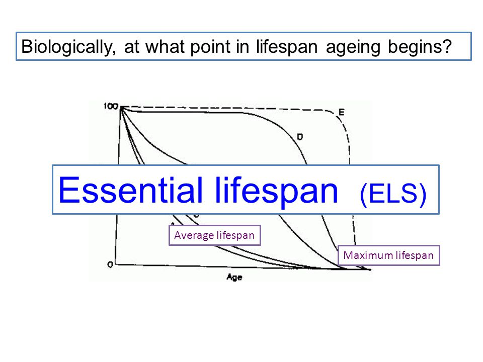 Average lifespan Maximum lifespan Biologically, at what point in lifespan ageing begins.