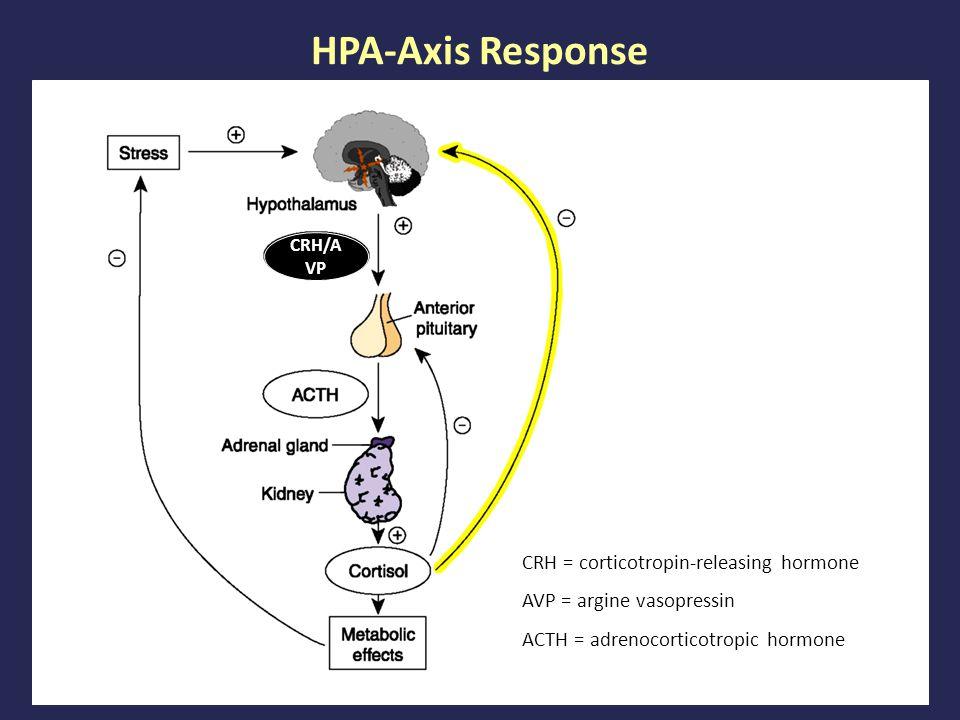 HPA-Axis Response CRH = corticotropin-releasing hormone AVP = argine vasopressin ACTH = adrenocorticotropic hormone CRH/A VP
