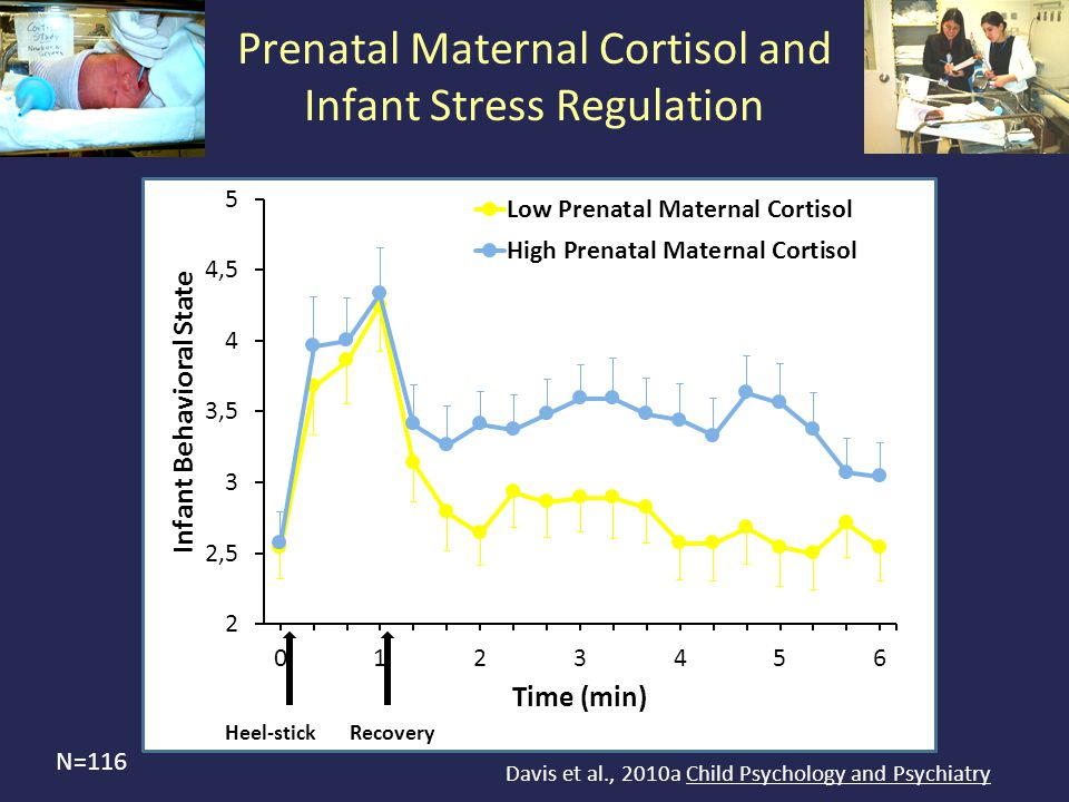 Heel-stickRecovery Prenatal Maternal Cortisol and Infant Stress Regulation N=116 Davis et al., 2010a Child Psychology and Psychiatry