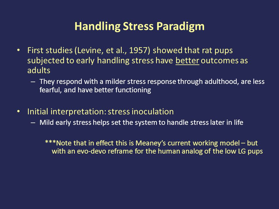 Handling Stress Paradigm First studies (Levine, et al., 1957) showed that rat pups subjected to early handling stress have better outcomes as adults – They respond with a milder stress response through adulthood, are less fearful, and have better functioning Initial interpretation: stress inoculation – Mild early stress helps set the system to handle stress later in life ***Note that in effect this is Meaney's current working model – but with an evo-devo reframe for the human analog of the low LG pups