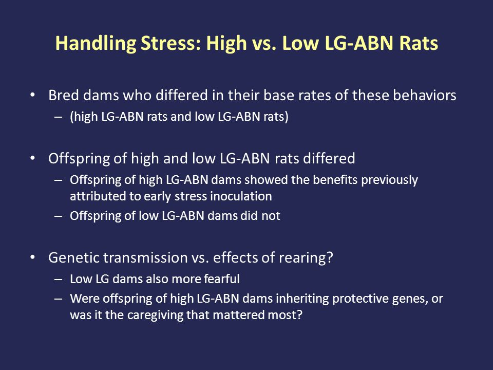 Handling Stress: High vs. Low LG-ABN Rats Bred dams who differed in their base rates of these behaviors – (high LG-ABN rats and low LG-ABN rats) Offsp
