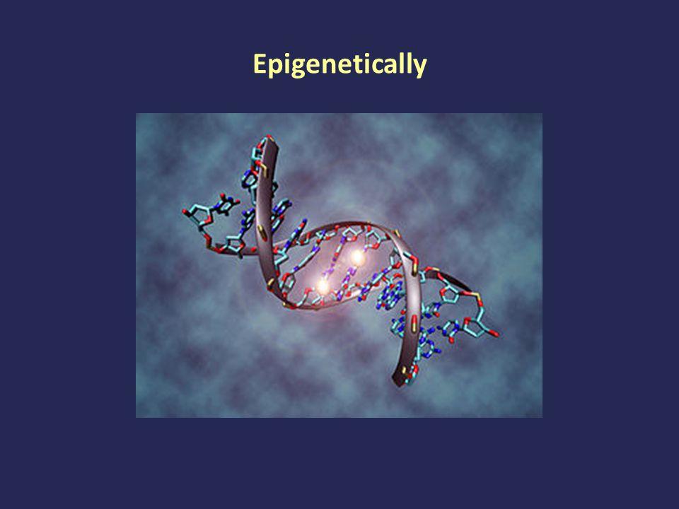 Epigenetically