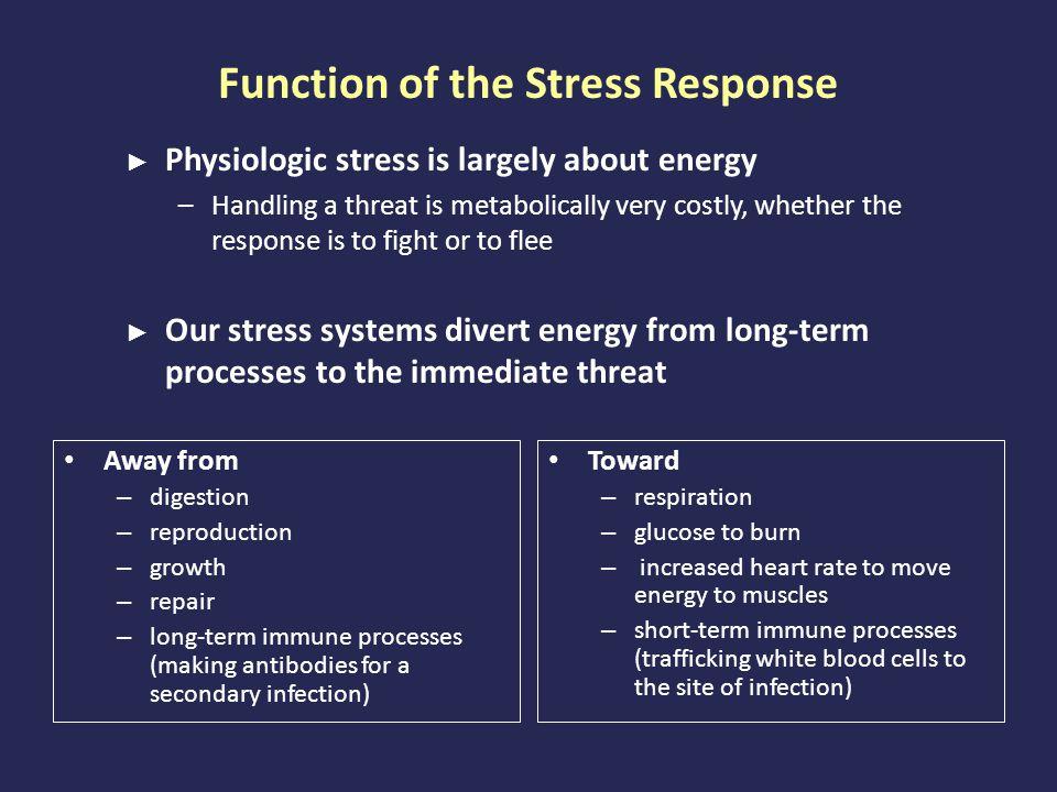Preschoolers Cortisol Response to Stress Hankin, B.