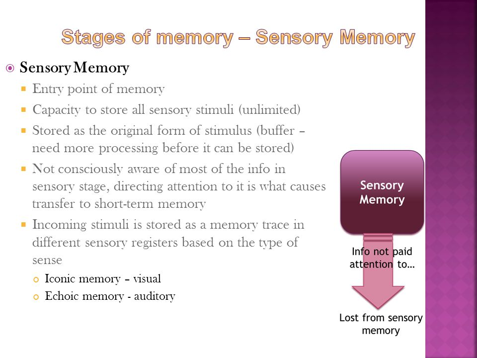  Sensory Memory  Entry point of memory  Capacity to store all sensory stimuli (unlimited)  Stored as the original form of stimulus (buffer – need