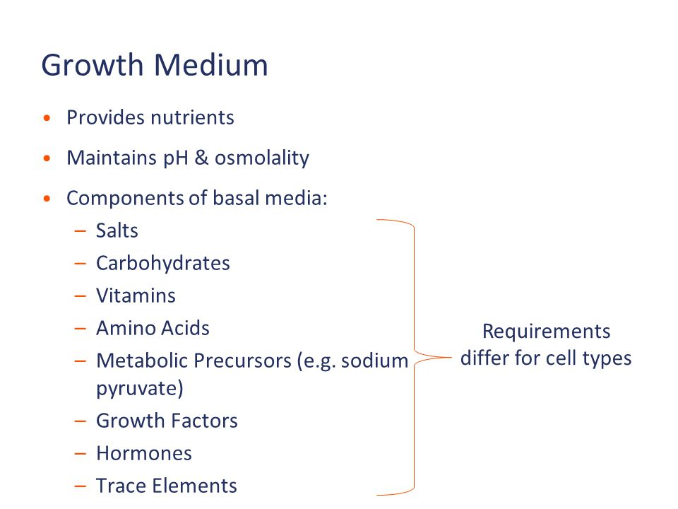 Growth Medium Provides nutrients Maintains pH & osmolality Components of basal media: –Salts –Carbohydrates –Vitamins –Amino Acids –Metabolic Precursors (e.g.