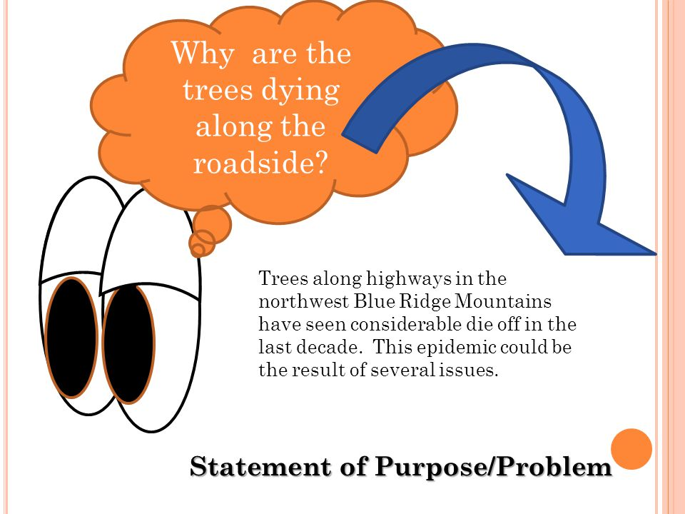 Statement of Purpose/Problem .Why are the trees dying along the roadside.