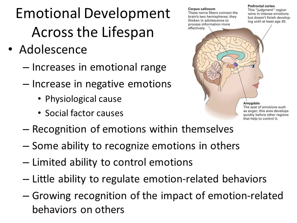 Emotional Development Across the Lifespan Adolescence – Increases in emotional range – Increase in negative emotions Physiological cause Social factor causes – Recognition of emotions within themselves – Some ability to recognize emotions in others – Limited ability to control emotions – Little ability to regulate emotion-related behaviors – Growing recognition of the impact of emotion-related behaviors on others