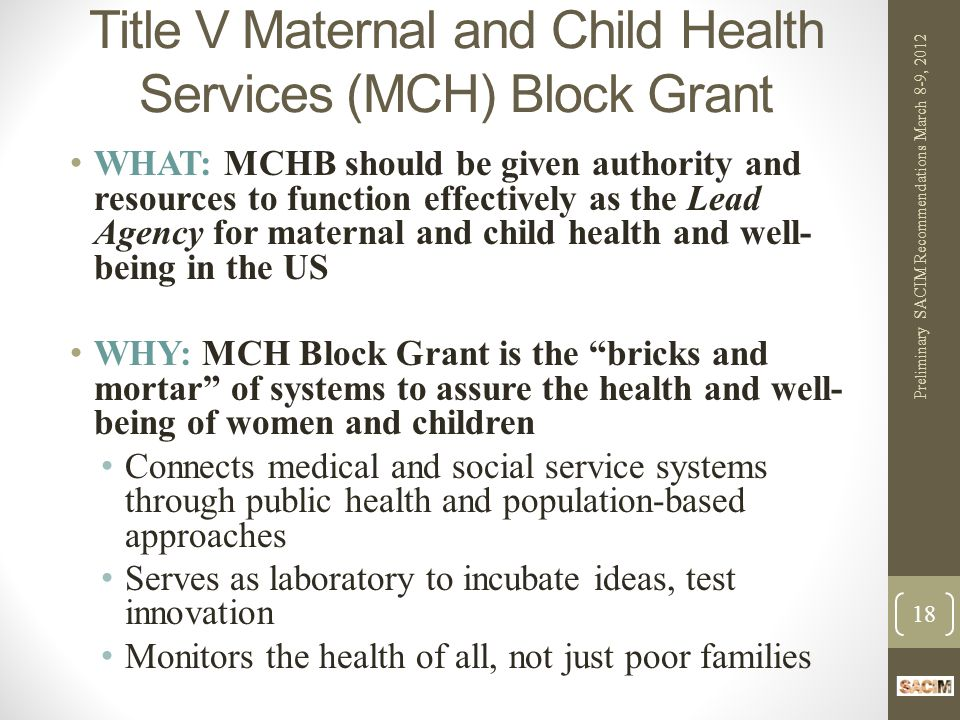 Title V Maternal and Child Health Services (MCH) Block Grant WHAT: MCHB should be given authority and resources to function effectively as the Lead Agency for maternal and child health and well- being in the US WHY: MCH Block Grant is the bricks and mortar of systems to assure the health and well- being of women and children Connects medical and social service systems through public health and population-based approaches Serves as laboratory to incubate ideas, test innovation Monitors the health of all, not just poor families Preliminary SACIM Recommendations March 8-9, 2012 18