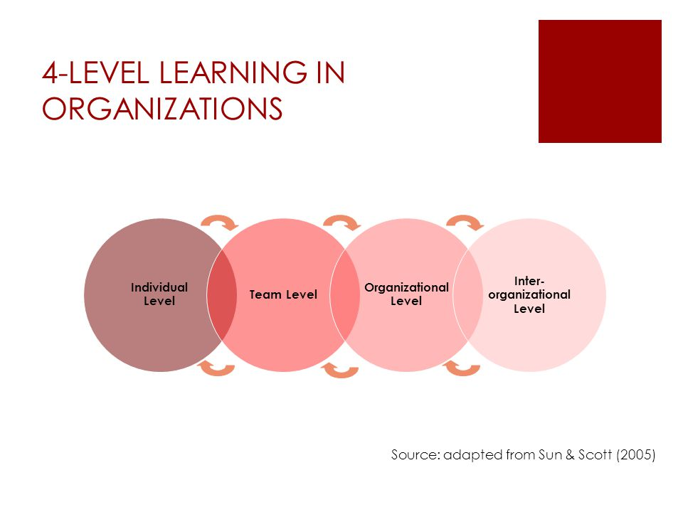 4-LEVEL LEARNING IN ORGANIZATIONS Source: adapted from Sun & Scott (2005) Individual Level Team Level Organizational Level Inter- organizational Level