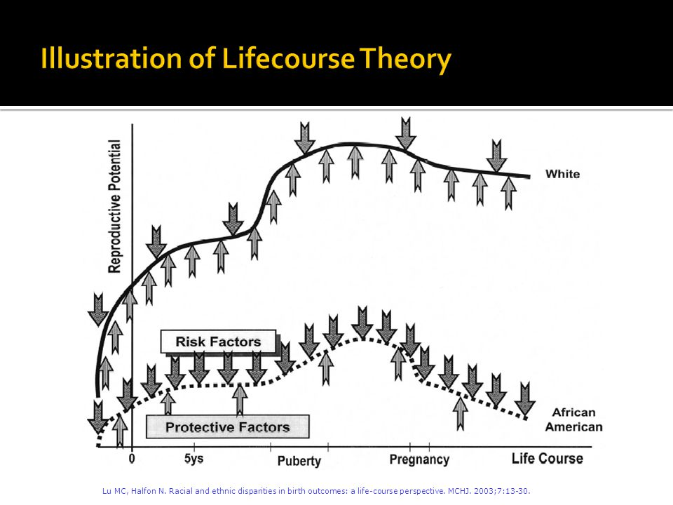 Lu MC, Halfon N. Racial and ethnic disparities in birth outcomes: a life-course perspective.