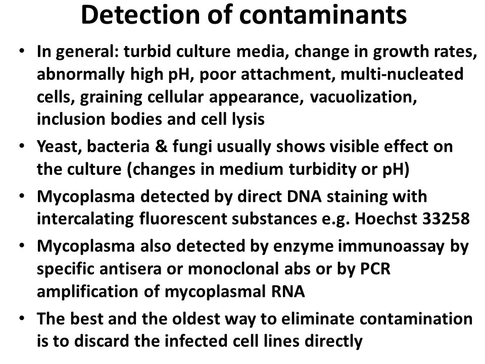 Detection of contaminants In general: turbid culture media, change in growth rates, abnormally high pH, poor attachment, multi-nucleated cells, graini