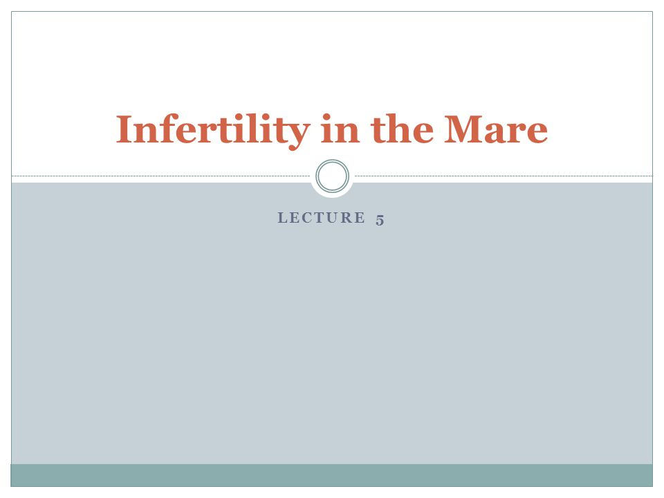 LECTURE 5 Infertility in the Mare