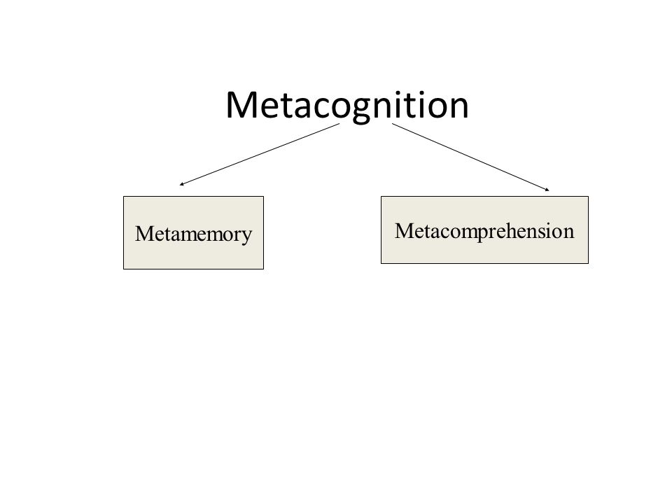 Metamemory Metacomprehension