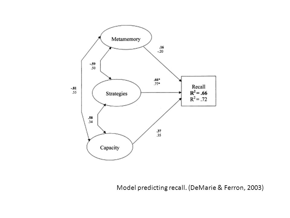 Model predicting recall. (DeMarie & Ferron, 2003)