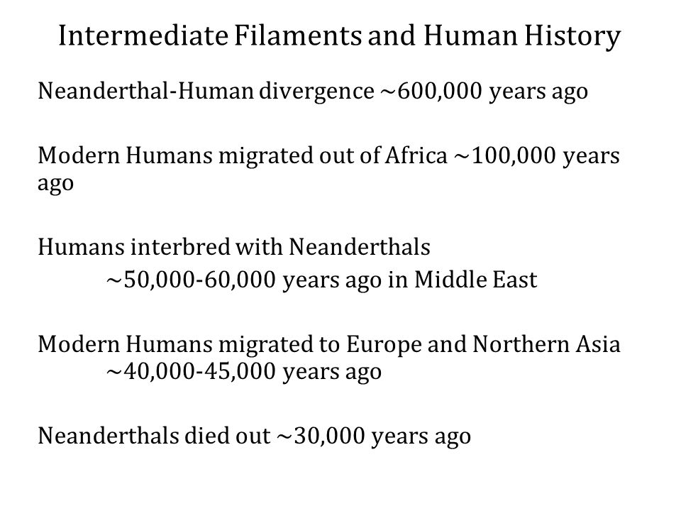 Neanderthal-Human divergence ~600,000 years ago Modern Humans migrated out of Africa ~100,000 years ago Humans interbred with Neanderthals ~50,000-60,000 years ago in Middle East Modern Humans migrated to Europe and Northern Asia ~40,000-45,000 years ago Neanderthals died out ~30,000 years ago