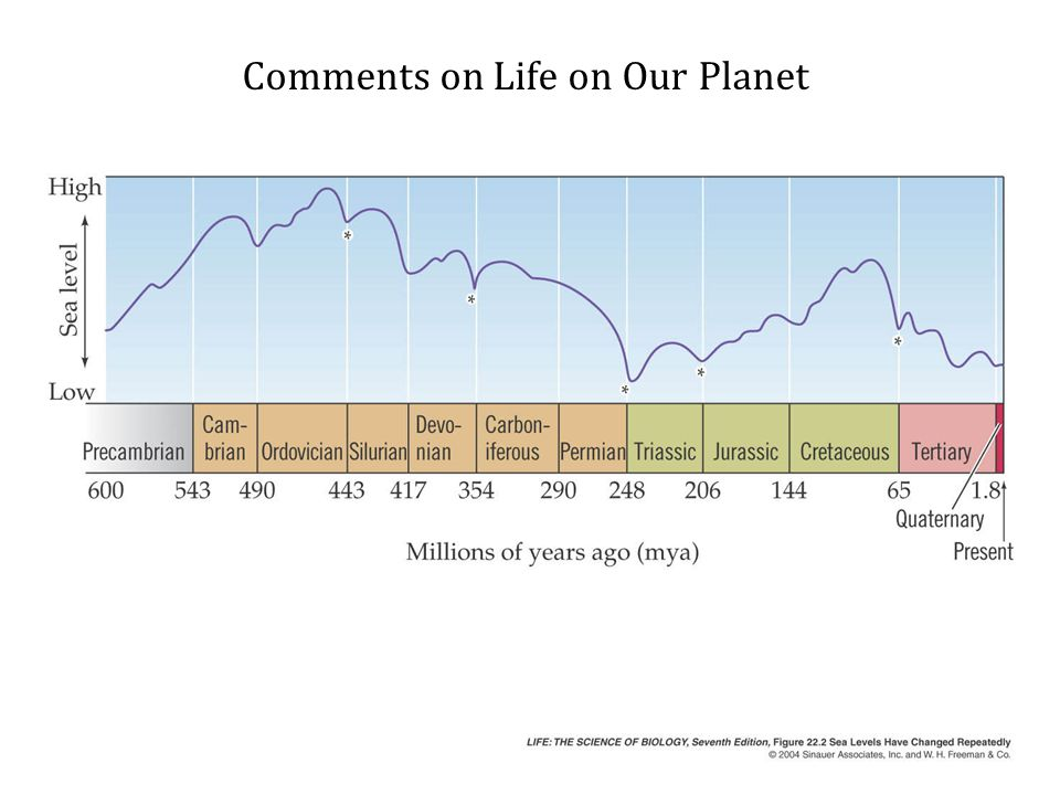 Comments on Life on Our Planet