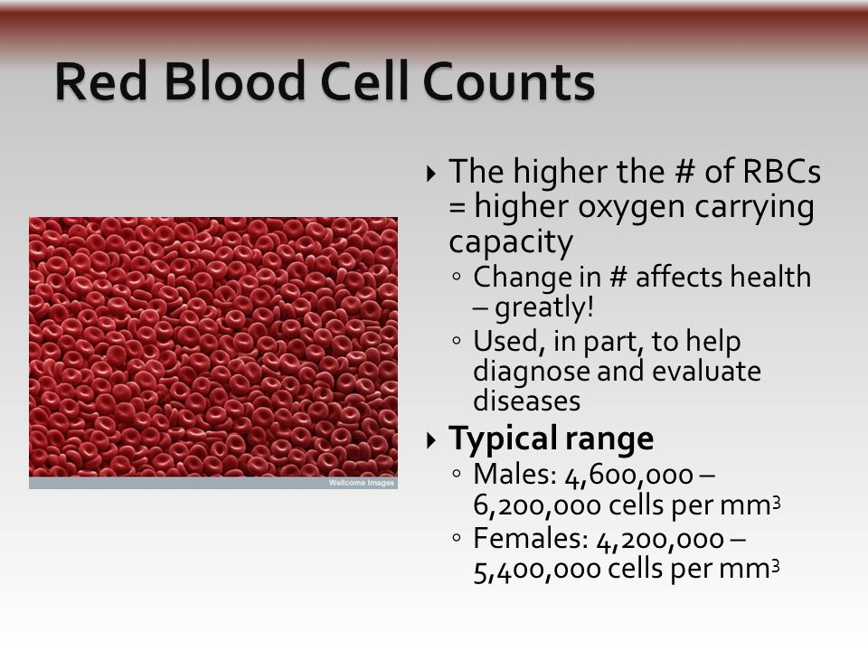  Normal range: 5,000-10,000 mm 3  Differential White Blood Cell Count ◦ Distinguish how many of each type ◦ Can be important for diagnosing some disorders/problems ◦ Excessive:  If your WBC count exceeds 10,000, this is leukocytosis (infection)  Ex: Appendicitis ◦ Deficiency:  If you WBC count is below 5,000, this is leukopenia (low count)  Ex: typhoid fever, influenza, measles, mumps, chickenpox, AIDS, polio WBC animation WBC animation