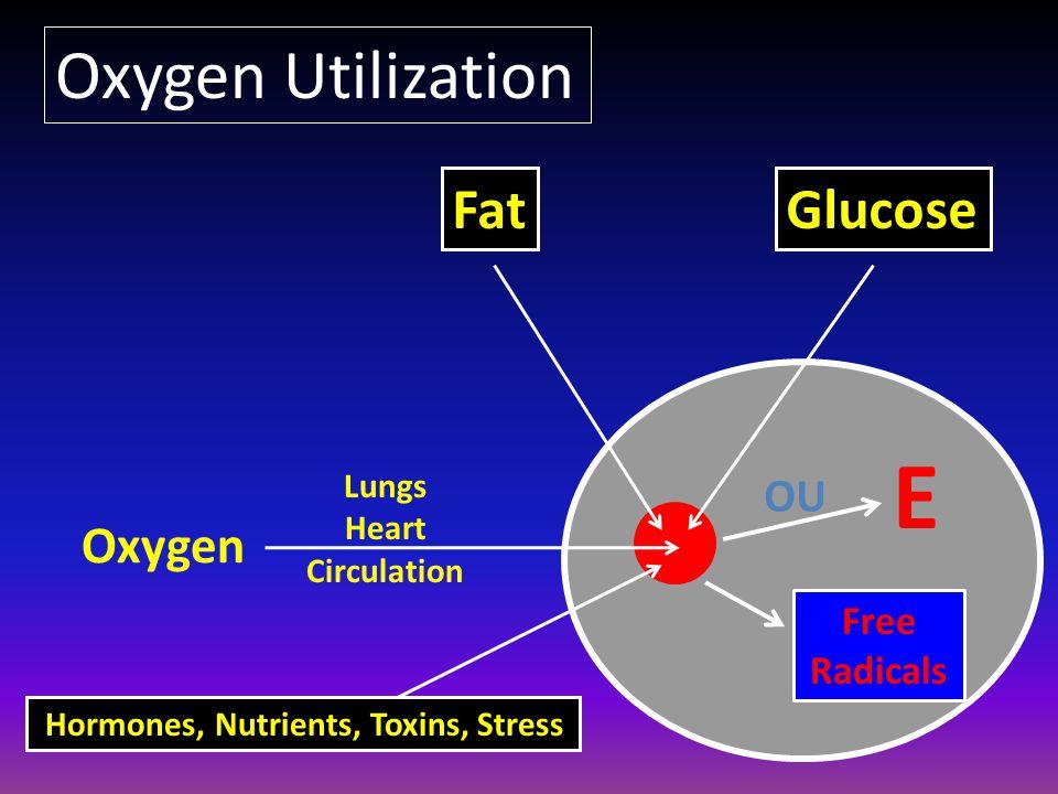 E Oxygen Lungs Heart Circulation FatGlucose Hormones, Nutrients, Toxins, Stress Oxygen Utilization Free Radicals OU