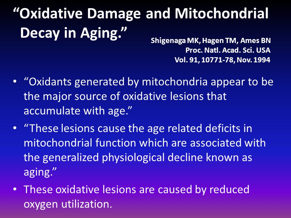 """""""Oxidative Damage and Mitochondrial Decay in Aging."""" """"Oxidants generated by mitochondria appear to be the major source of oxidative lesions that accum"""