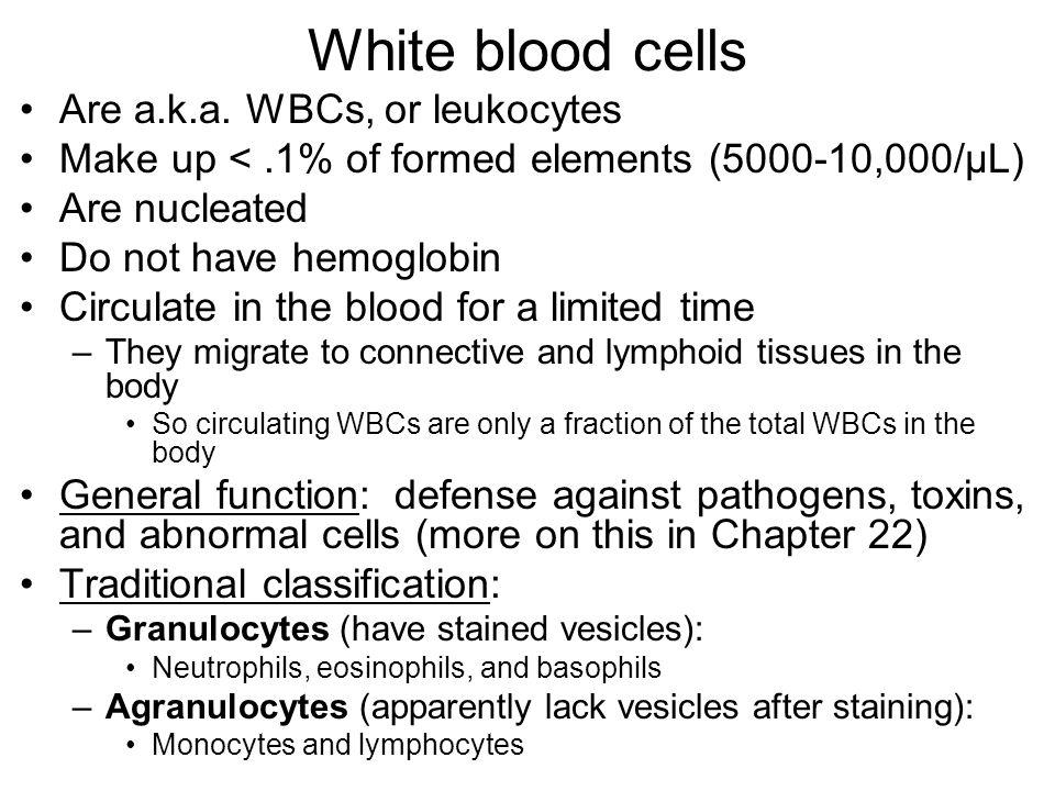 White blood cells Are a.k.a. WBCs, or leukocytes Make up <.1% of formed elements (5000-10,000/μL) Are nucleated Do not have hemoglobin Circulate in th