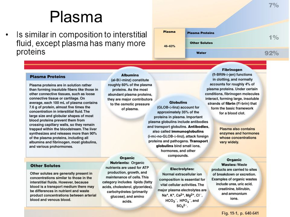 Plasma Is similar in composition to interstitial fluid, except plasma has many more proteins Fig. 19-1, p. 640-641