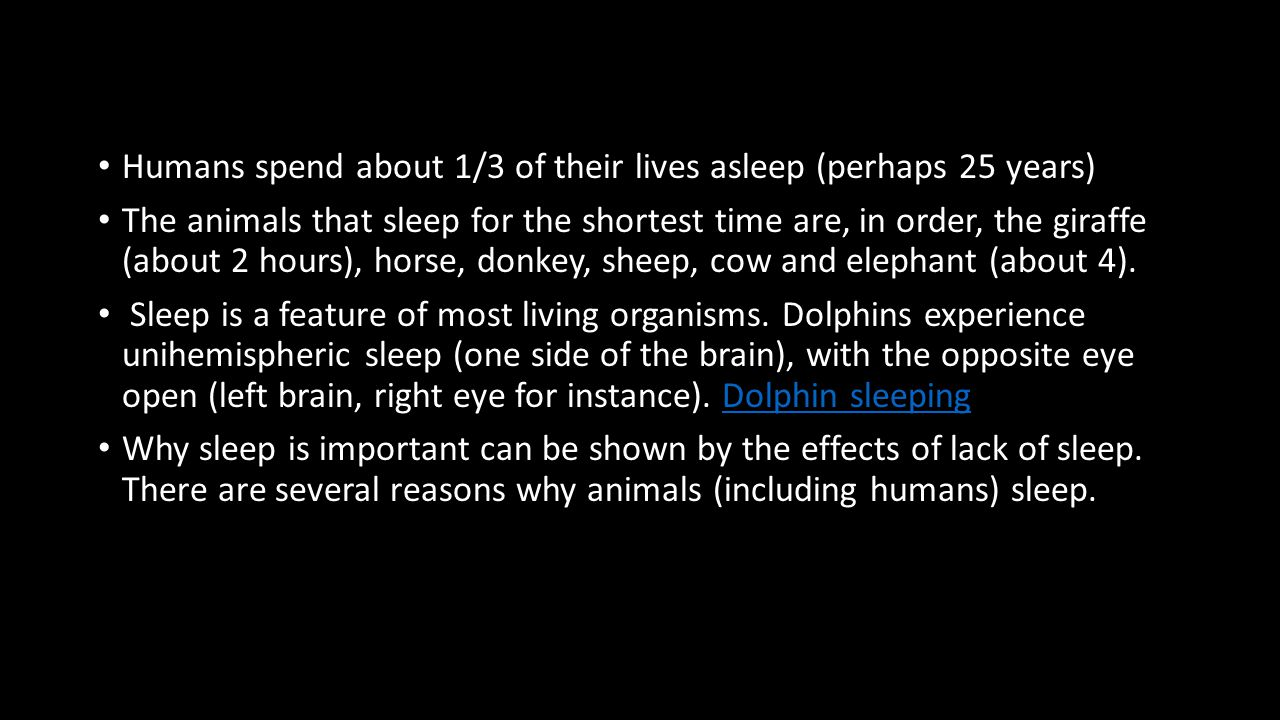 Humans spend about 1/3 of their lives asleep (perhaps 25 years) The animals that sleep for the shortest time are, in order, the giraffe (about 2 hours), horse, donkey, sheep, cow and elephant (about 4).