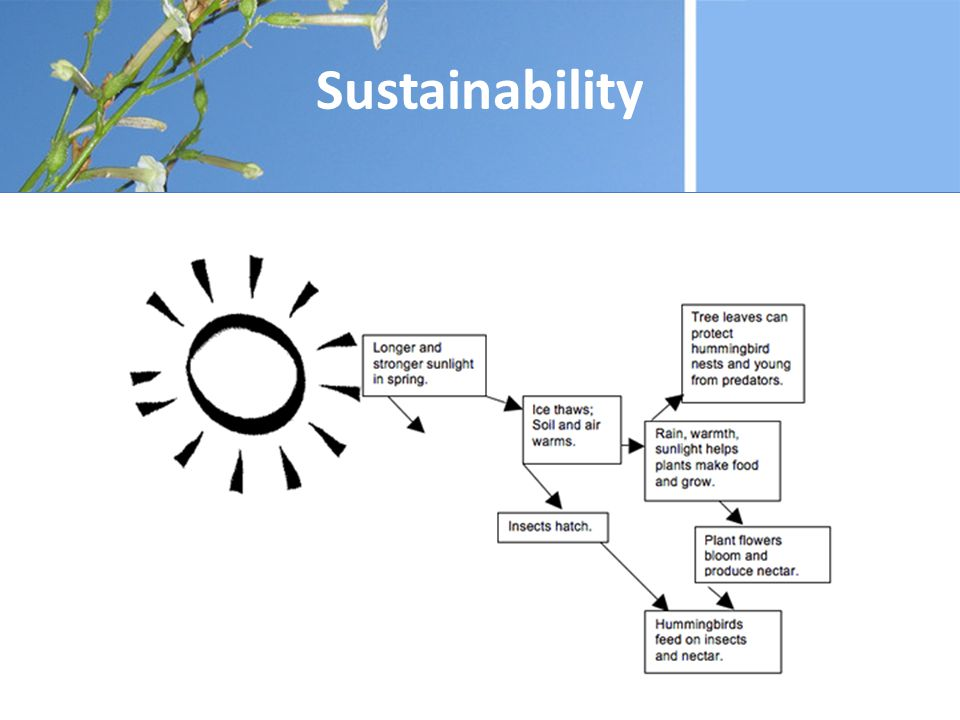 Qualitative sustainability evaluation