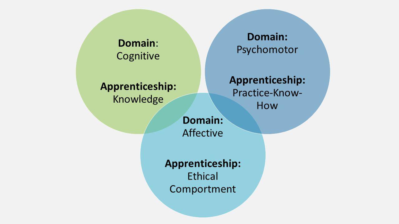 Domain: Cognitive Apprenticeship: Knowledge Domain: Affective Apprenticeship: Ethical Comportment Domain: Psychomotor Apprenticeship: Practice-Know- H