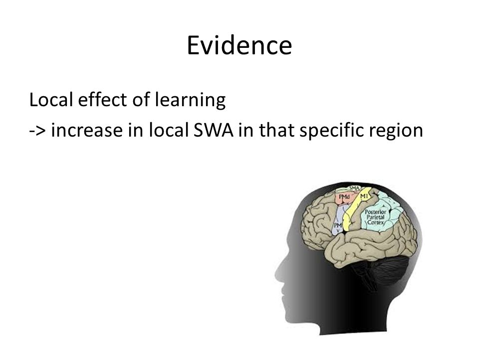 Evidence Local effect of learning -> increase in local SWA in that specific region