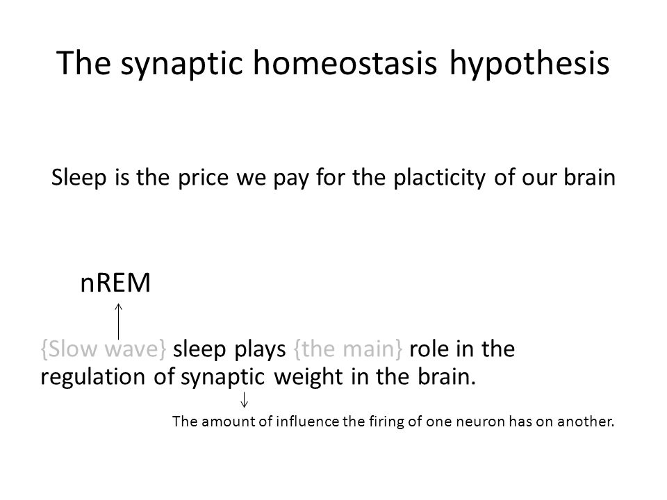 The synaptic homeostasis hypothesis Sleep is the price we pay for the placticity of our brain {Slow wave} sleep plays {the main} role in the regulatio