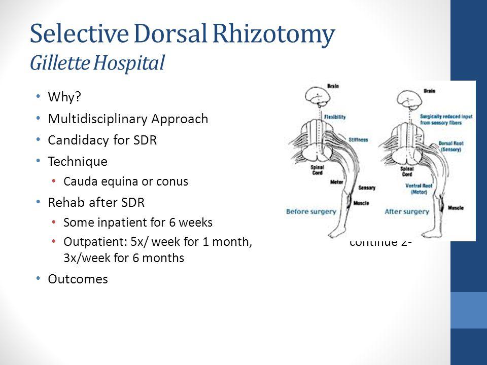 Selective Dorsal Rhizotomy Gillette Hospital Why.