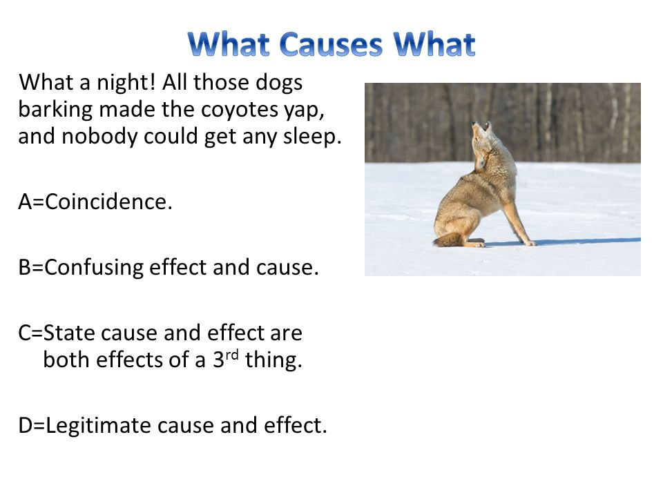What a night! All those dogs barking made the coyotes yap, and nobody could get any sleep. A=Coincidence. B=Confusing effect and cause. C=State cause