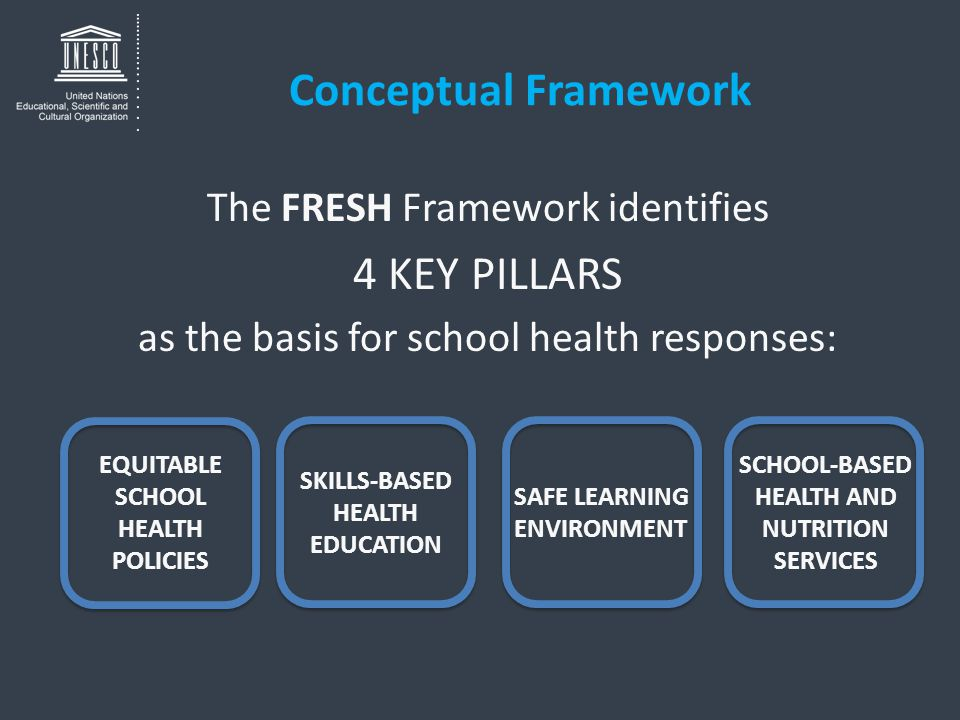 Conceptual Framework The FRESH Framework identifies 4 KEY PILLARS as the basis for school health responses: EQUITABLE SCHOOL HEALTH POLICIES SKILLS-BASED HEALTH EDUCATION SCHOOL-BASED HEALTH AND NUTRITION SERVICES SAFE LEARNING ENVIRONMENT