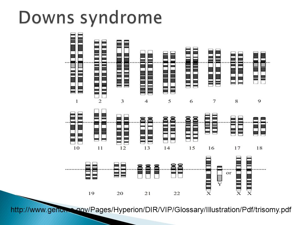 http://www.genome.gov/Pages/Hyperion/DIR/VIP/Glossary/Illustration/Pdf/trisomy.pdf