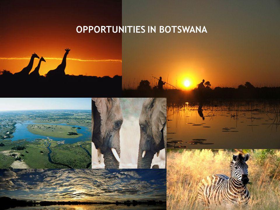 OPPORTUNITIES IN BOTSWANA