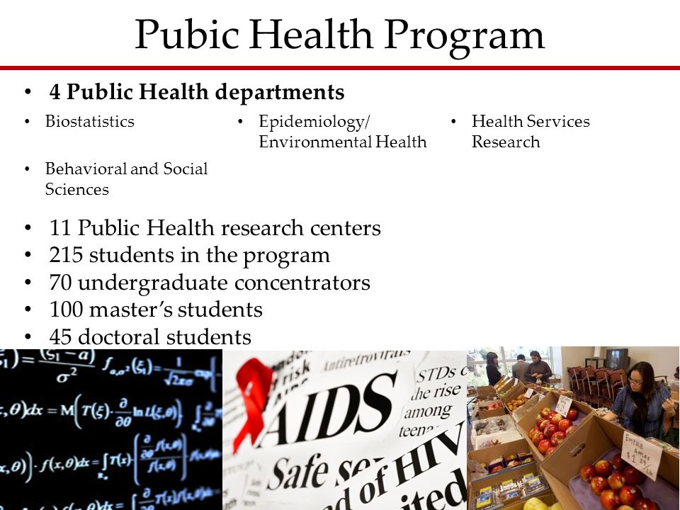 Pubic Health Program Biostatistics Epidemiology/ Environmental Health Health Services Research Behavioral and Social Sciences 4 Public Health departments 11 Public Health research centers 215 students in the program 70 undergraduate concentrators 100 master's students 45 doctoral students