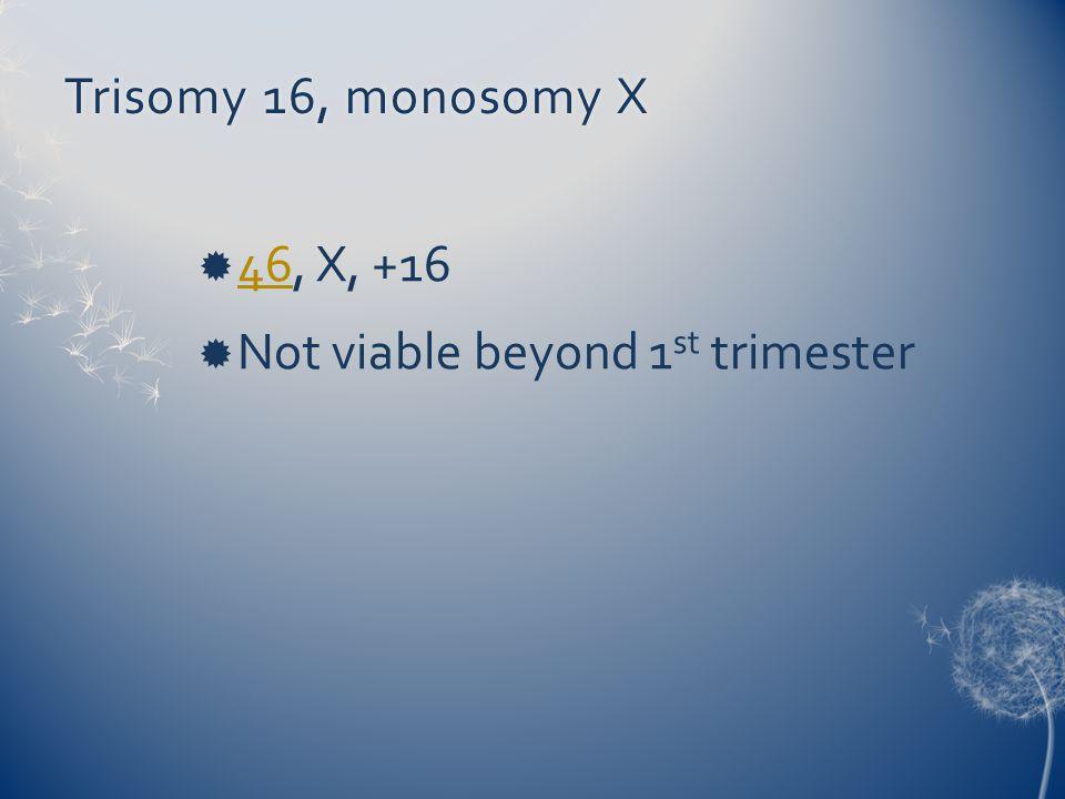 Trisomy 16, monosomy XTrisomy 16, monosomy X  46, X, +16 46  Not viable beyond 1 st trimester